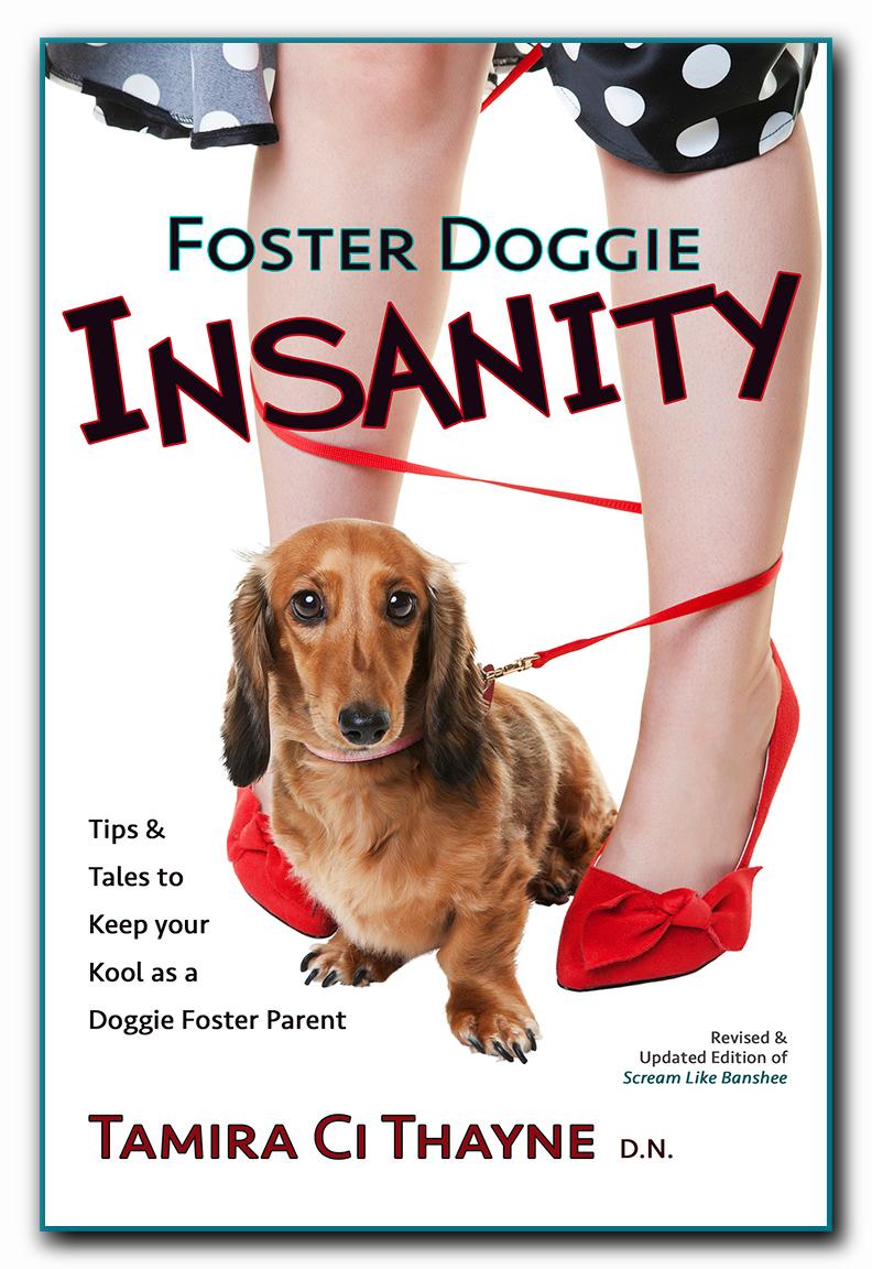 Foster Doggie Insanity